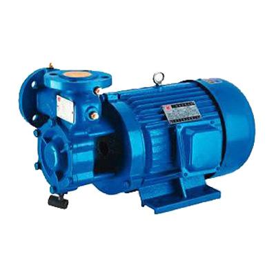 W单级漩涡泵
